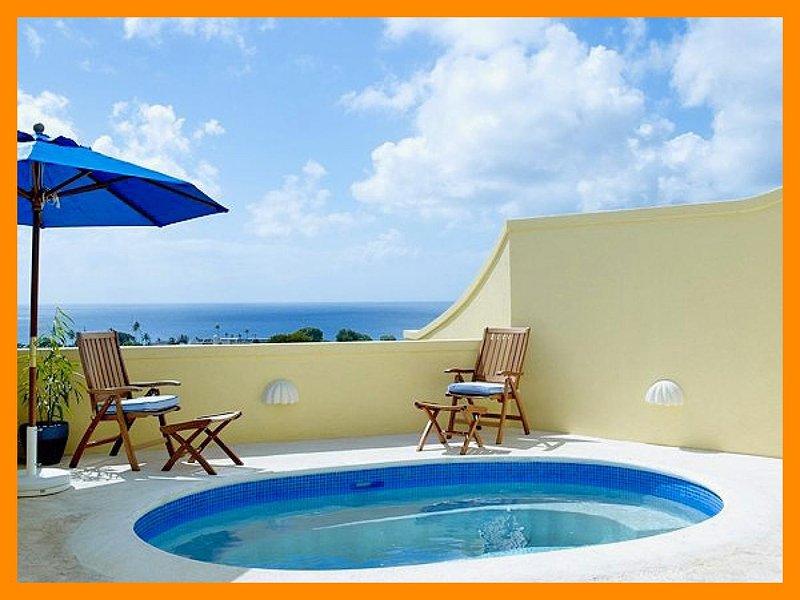 Barbados 249 - Image 1 - Lower Carlton - rentals