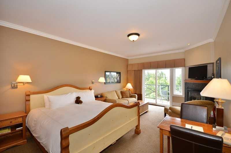 Open plan studio style suite - Terrific Sidney Garden View Studio Suite Close to Ocean and Beaches - Sidney - rentals