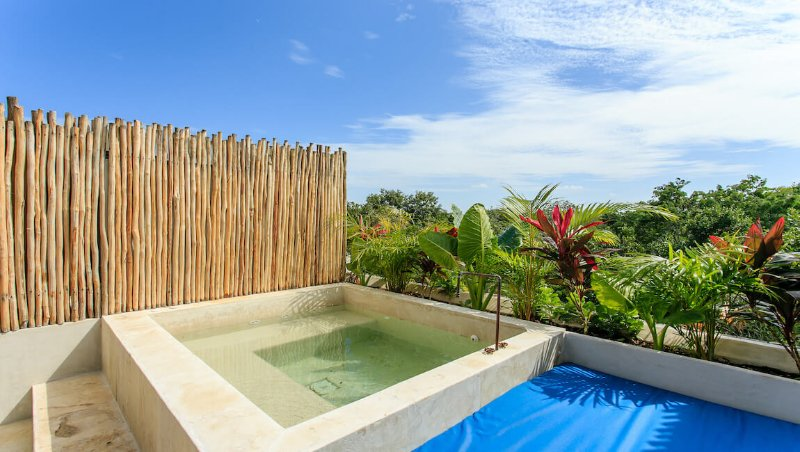 Artia penthouse  Ahau - Image 1 - Tulum - rentals