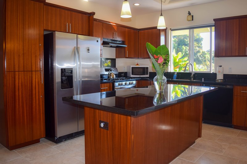 Kahawai Hale is a beautiful, brand new ocean view home. The kitchen is a joy to cook in! - Kahawai Hale - Papaikou - rentals