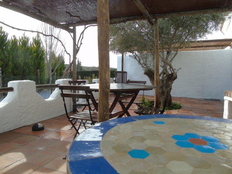 Cuevas Andalucía- Cueva Oliva - Image 1 - Baza - rentals