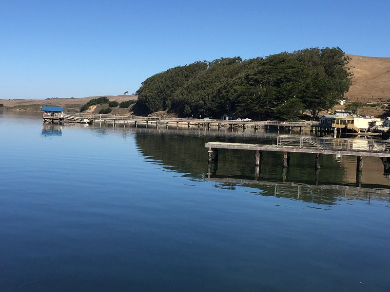 View from kitchen window. - SHOREHOUSE. A pristine cottage on Tomales Bay, steps from Nick's Cove Restaurant - Marshall - rentals