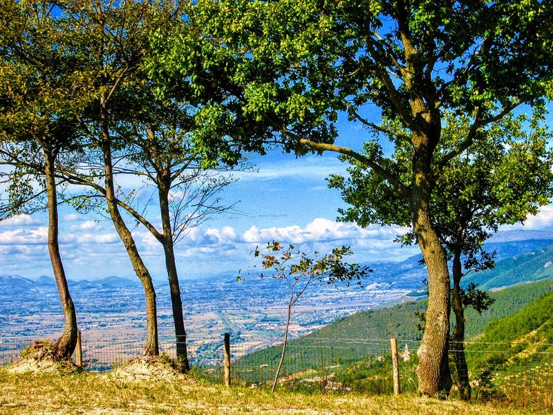 Vista Del Mondo:Country House, Spoleto - 7 miles - Image 1 - Spoleto - rentals