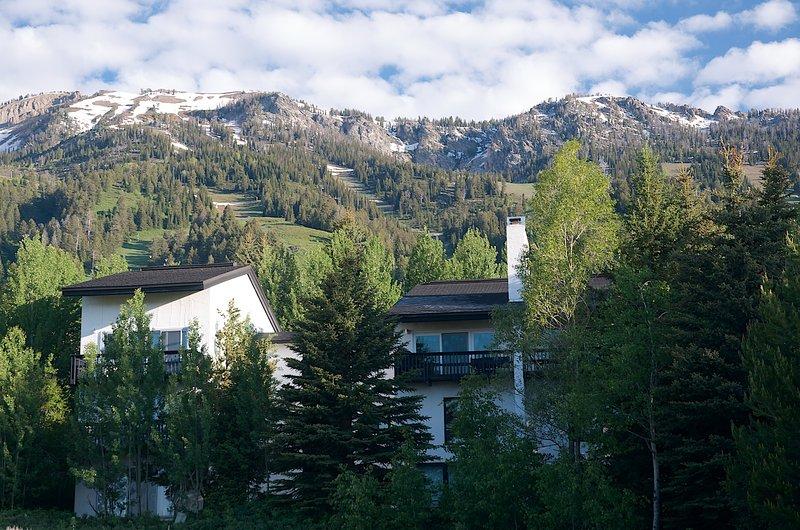 Four Seasons Condo - Image 1 - Teton Village - rentals
