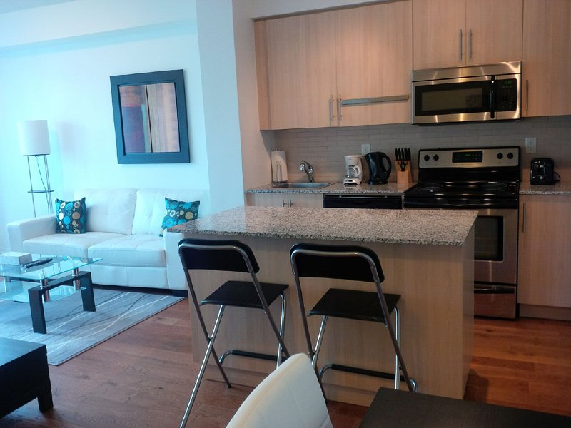 1 Bed + Den Downtown Condo next to harbour - Image 1 - Toronto - rentals