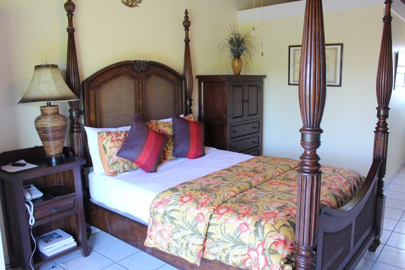 Gracemir House- Large 2 bedroom, sleeps 4-6 - Image 1 - Providenciales - rentals