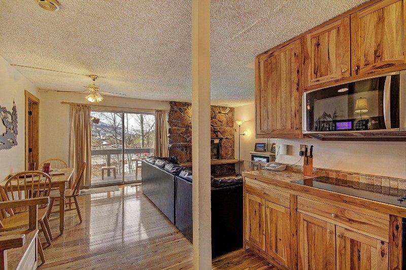 "SkyRun Property - ""Storm Meadows East E31"" - Welcome to your mountain home! - Storm Meadows East E31 - Steamboat Springs - rentals"