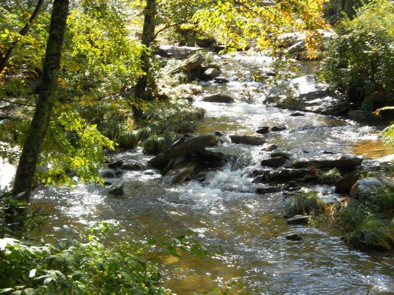 A River Runs Through It - Image 1 - Boone - rentals