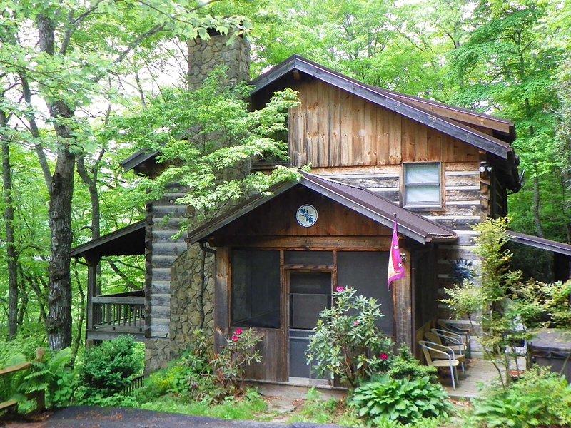 Daniel Boone Lodge - Image 1 - Boone - rentals