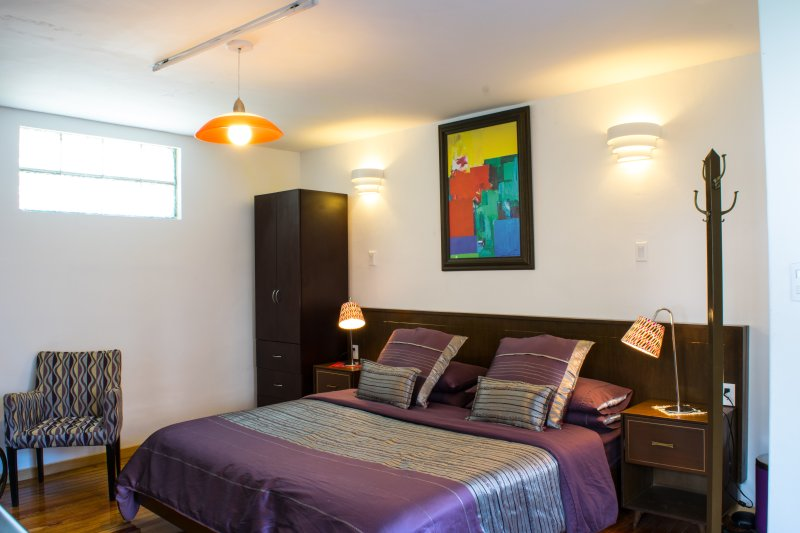 Comfy Studio Near Condesa & WTC, Ideal 4 Singles - Image 1 - Mexico City - rentals