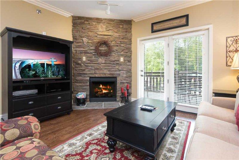 Baskins Creek 112 - Image 1 - Gatlinburg - rentals