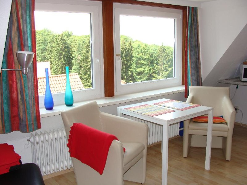 Vacation Apartment in Ostercappeln - 517 sqft, pristine, quiet, modern (# 1606) #1606 - Vacation Apartment in Ostercappeln - 517 sqft, pristine, quiet, modern (# 1606) - Osnabrück - rentals