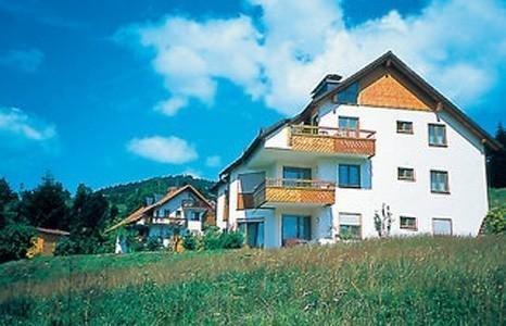 Vacation Apartment in Todtmoos - 538 sqft, Ruhig, idyllisch, familienfreundlich (# 5337) #5337 - Vacation Apartment in Todtmoos - 538 sqft, Ruhig, idyllisch, familienfreundlich - Todtmoos - rentals