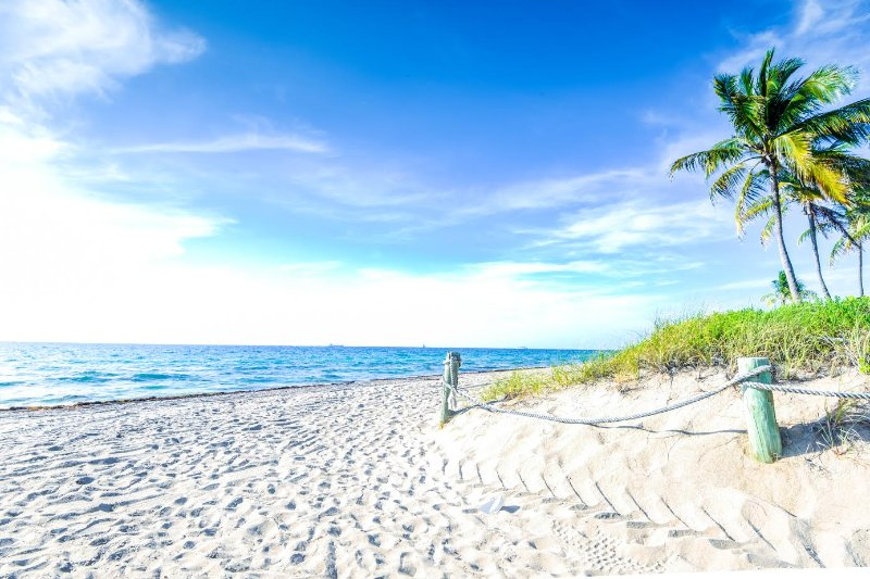 Coco Palm Escape: Walk to Ocean - Image 1 - Pompano Beach - rentals