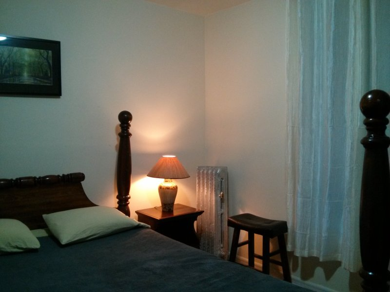 Comfortable place Center-Manhattan - Image 1 - Bronx - rentals