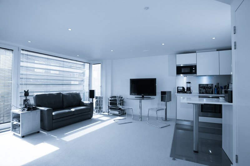 Light & airy living space - Stunning Canalside Apartment in Central London - London - rentals