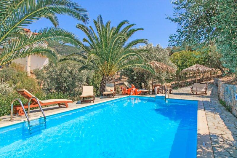 Swimming Pool - Villa Ourania - Potami - rentals