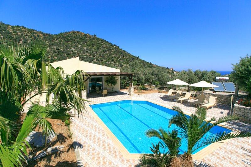Villa With Private Pool - Villa Dimitrios - Milopotamos - rentals