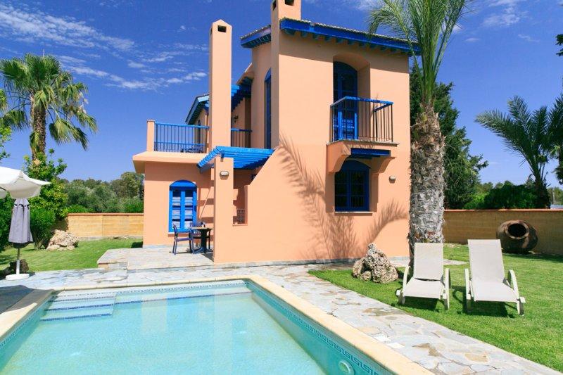 Villa With Private Pool and Garden - Villa Apollo - Polis - rentals