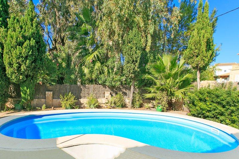 Swimming Pool - Villa Minerva - Puerto de Alcudia - rentals