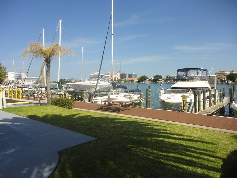 #19 - Clearwater Beach Waterfront Condo - Image 1 - Clearwater - rentals