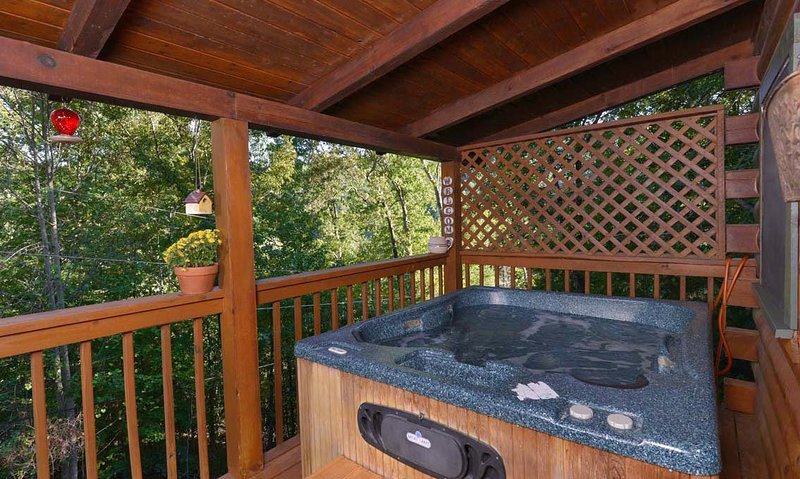 Endless Love - Image 1 - Gatlinburg - rentals