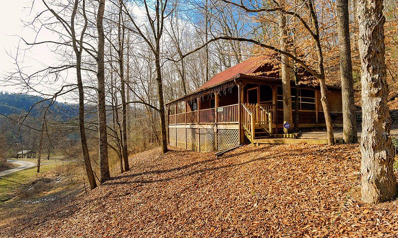 Wild Rose - Image 1 - Gatlinburg - rentals