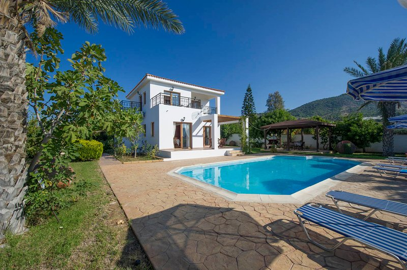 Villa With Private Pool and Sea Views - Villa Pelagos - Nea Dimmata - rentals
