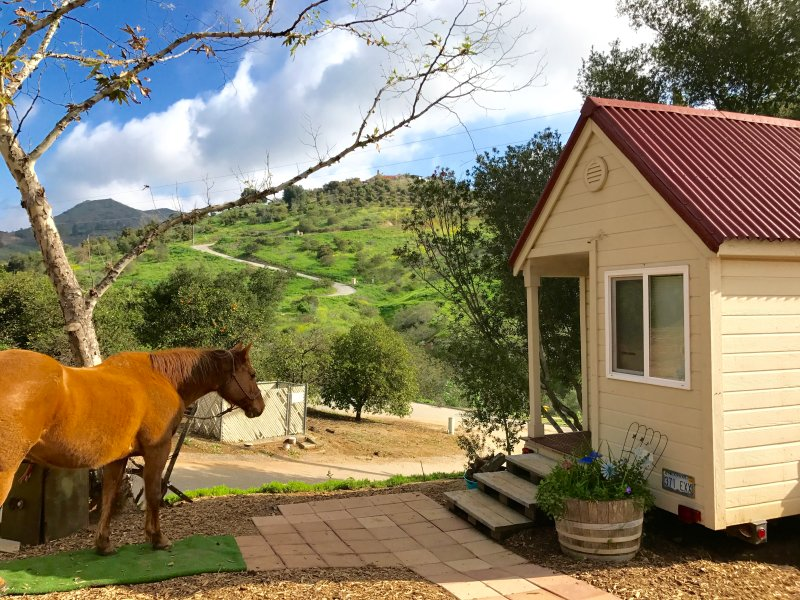Imagine! A TINY HOUSE on a Fallbrook Ranch with Horseback Riding in PARADISE - Image 1 - Fallbrook - rentals