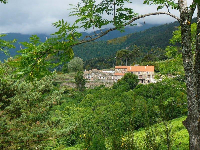 Old Pyreneeen Farmhouse With Beautiful Views - Image 1 - Prats de Mollo la Preste - rentals