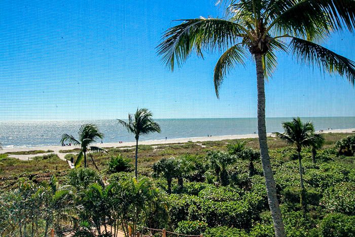 VIEW FROM UNIT - Sanddollar B303 - Sanibel Island - rentals