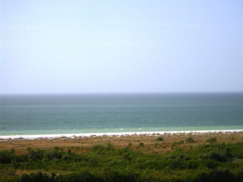View of Gulf of Mexico from Balcony  - Marco Island Beachfront 2-Bedroom / 2-Bath Condo - Marco Island - rentals