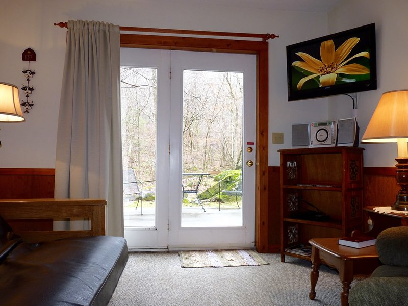 Bright, Cheerful Living Room w/ Comfy Furniture and Flat Screen TV - Romantic, Pet-Friendly Cabin in Blue Ridge Mountains - Barnwood - Tyro - rentals