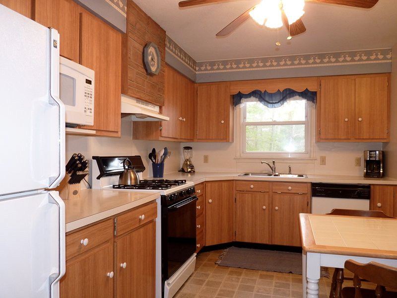 And Yet Another Shot of the Kitchen - Pet Friendly 2BR House in Blue Ridge Mtns, Close to Blue Ridge Parkway - Lyndhurst - rentals