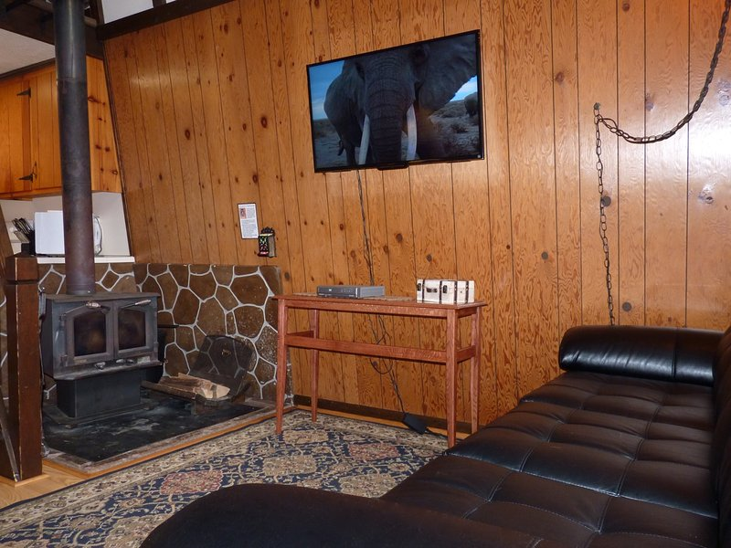 The Living Room, Featuring Comfy Furniture, a Wood Burning Stove, and a Large Flatscreen TV - Pet-Friendly Secluded Mountain Cabin by Pool - Rockwood - Staunton - rentals