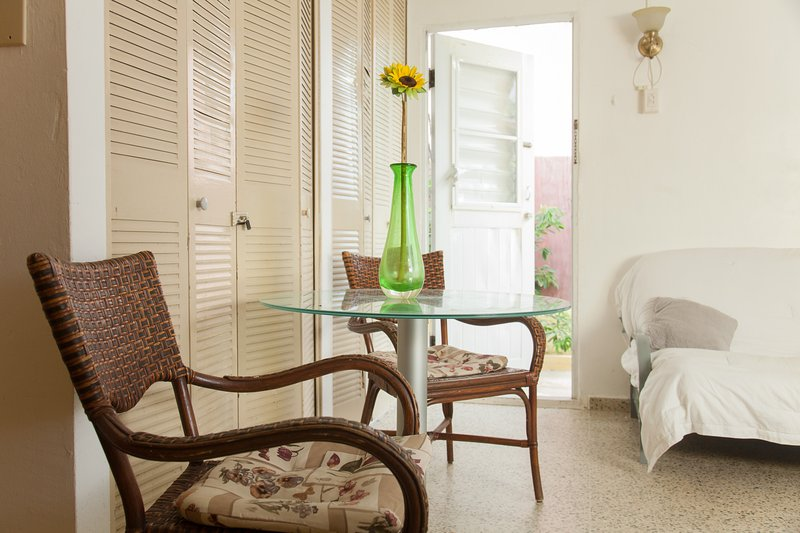 Inside front room of onebedroom apt. - Economic 1 bedroom apt, near airport & beaches  hi - Carolina - rentals