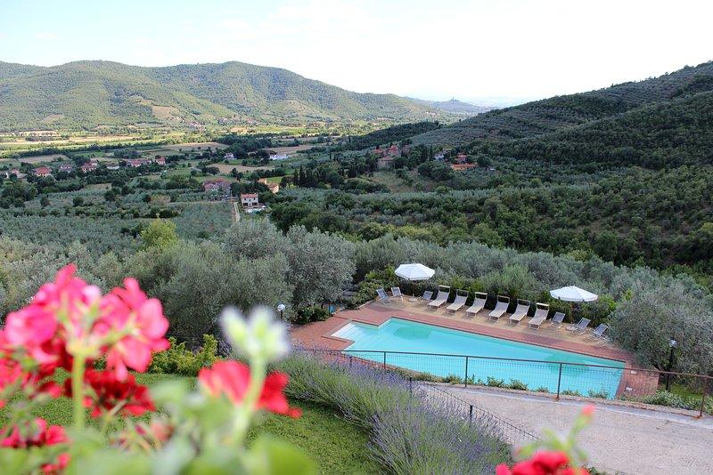 Villa Margarita, Garden Apartment with lovely Pool - Image 1 - Castiglion Fiorentino - rentals