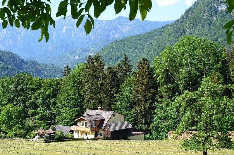 Alpine Meadows apartment (Alpenwiesen Fewo) - Image 1 - Bad Ischl - rentals