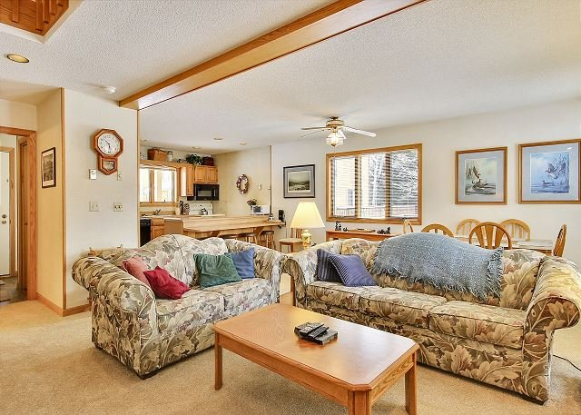 Unit 045 is the perfect home-base for a Canaan Valley/ Davis, WV vacation! - Image 1 - Davis - rentals