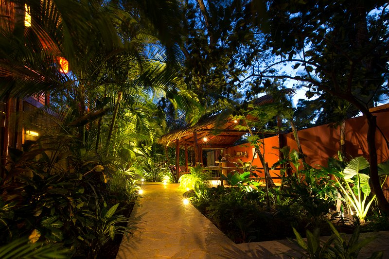 Elevated Walkways Thru the Gardens - Monkeys Parrots  Lush Tropical Paradise. Gaviota - Playa Flamingo - rentals