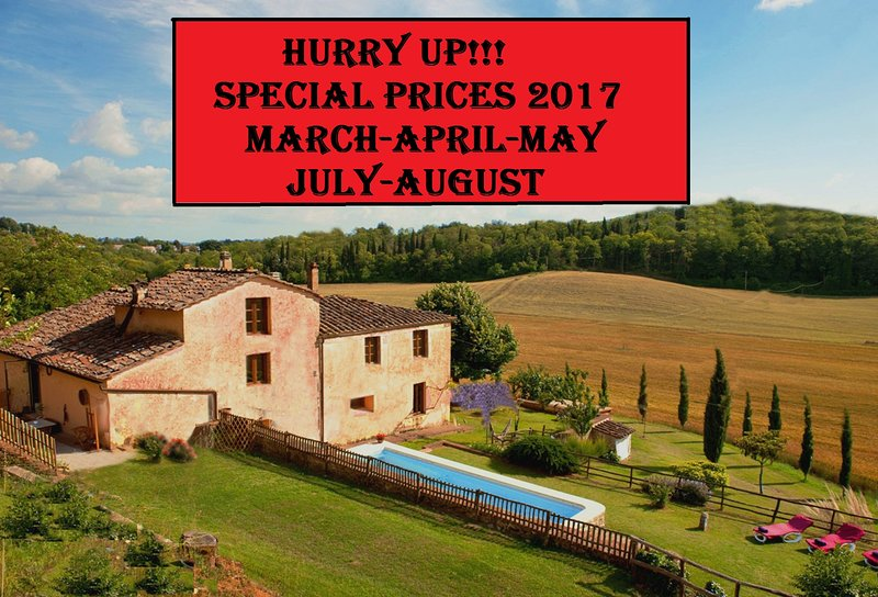 Private Villa,Pool, Hot tub,free WiFi,15km from Siena -SPECIAL PRICES 2017!!! - Image 1 - Siena - rentals