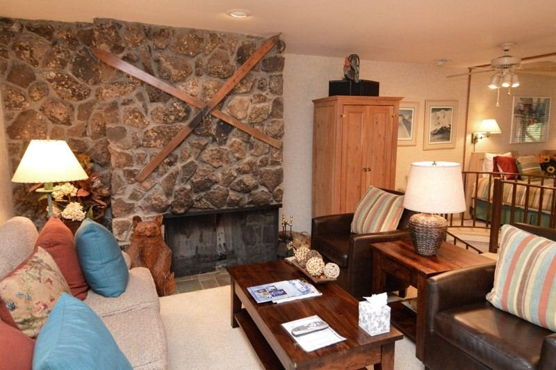 living-1.jpg - Fasching Haus Unit 440 - Aspen - rentals