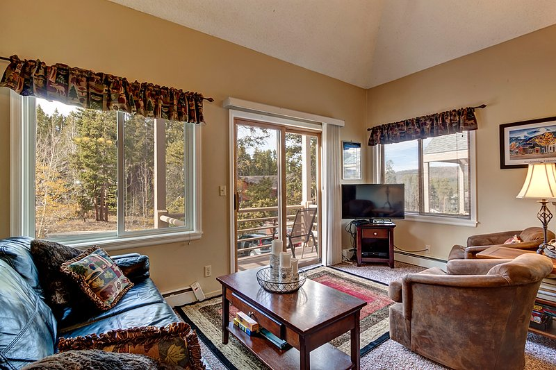 Reasonably Priced  1 Bedroom  - *********** - Image 1 - Breckenridge - rentals