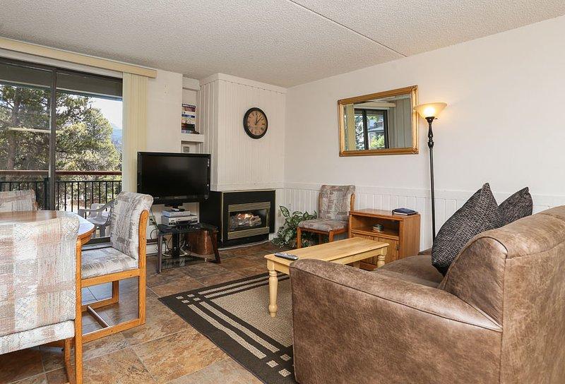 Perfectly Priced  2 Bedroom  - ********** - Image 1 - Breckenridge - rentals