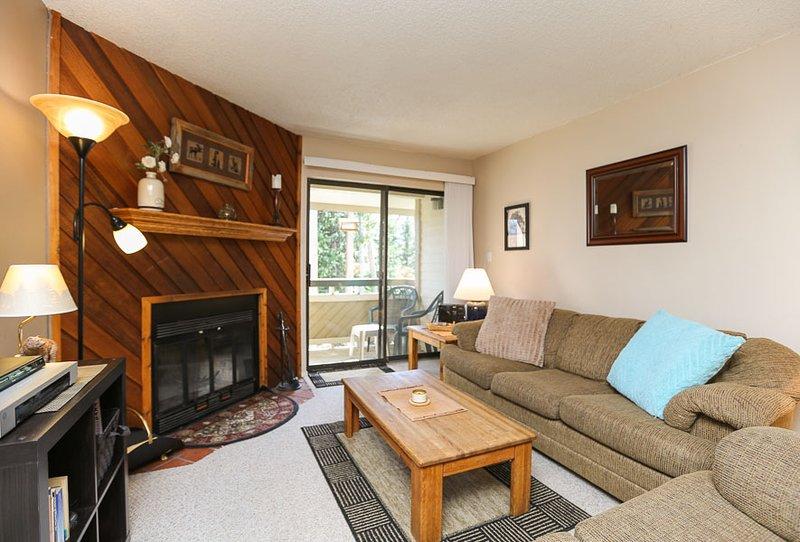 Lovely  2 Bedroom  - ********** - Image 1 - Breckenridge - rentals