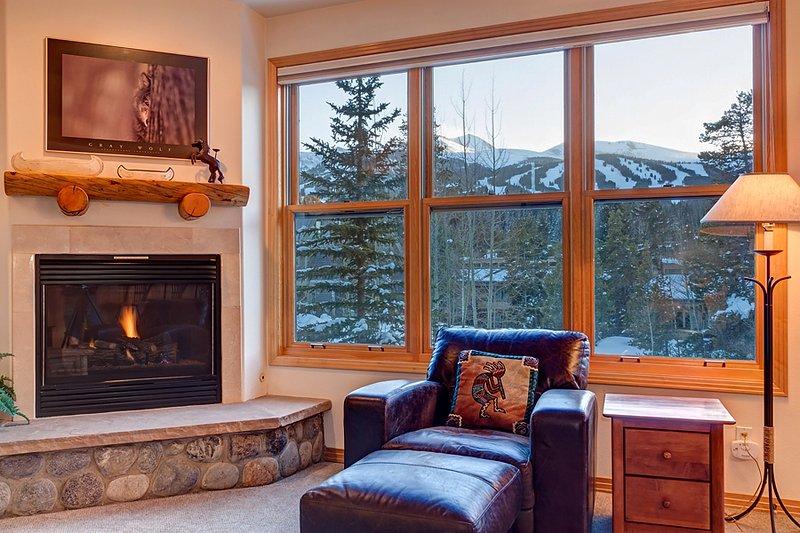 Appealing  2 Bedroom  - ********** - Image 1 - Breckenridge - rentals