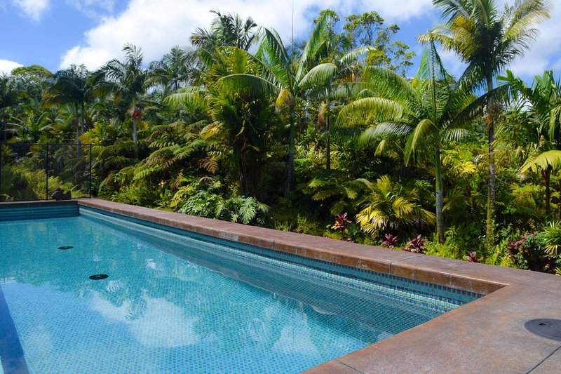 Jake's Jungle Paradise is a beautiful new home with a pool in Leilani Estates - Jake''s Jungle Paradise: Large New Private Home w/Pool, Orchards, Gardens - Pahoa - rentals