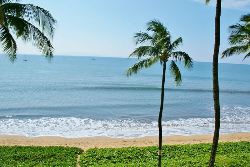 SUGAR BEACH RESORT, #418 - Image 1 - Kihei - rentals
