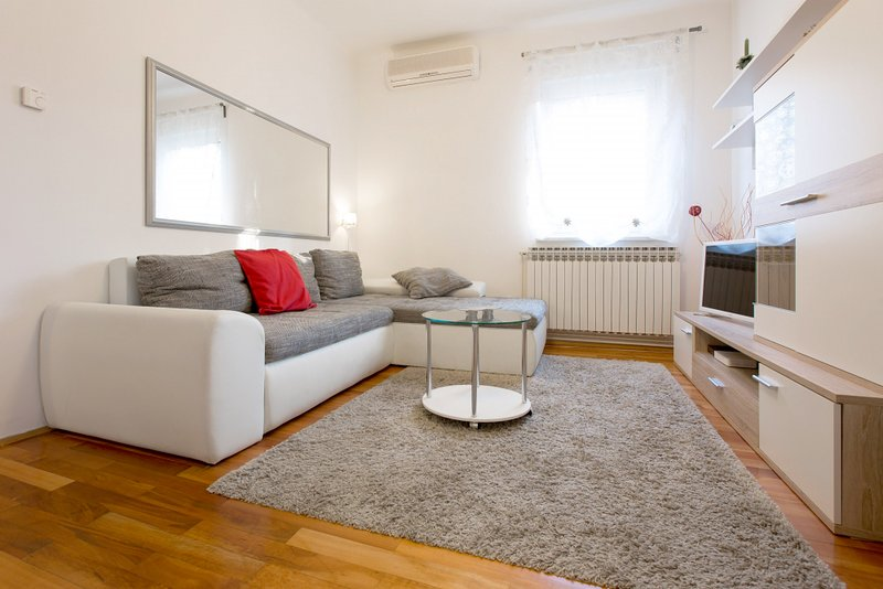 Living room with the double sofa bed and the TV - Lisinski - Zagreb - rentals
