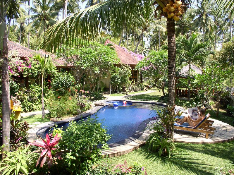 relaxing under the coconut tree - Saraswati Holiday House - Lovina - rentals